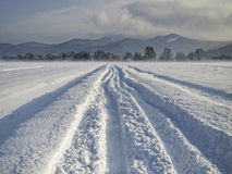 Snowy road through snowy fields. On a sunny winter day Stock Image