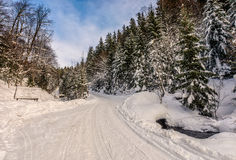Snowy road through spruce forest Royalty Free Stock Photos