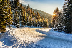 Snowy road through spruce forest in mountains. Winter mountain landscape. winding road that leads into the spruce forest covered with snow at sunrise stock images