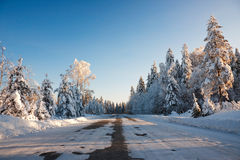 Snowy road at sunset Stock Image