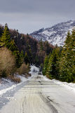 Snowy road to coniferous forest in mountains. Winter mountain landscape. road that leads into the pine forest covered with snow royalty free stock images