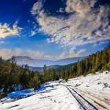 Snowy road to coniferous forest in mountains Stock Images