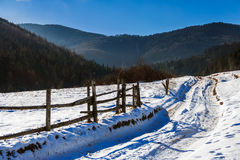 Snowy road to coniferous forest in mountains. Winter mountain landscape. winding road that leads into the pine forest covered with snow. wooden fence stands near royalty free stock photography
