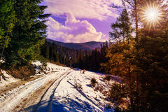 Snowy road to coniferous forest in mountains Royalty Free Stock Photography