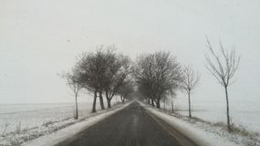 Snowy Road Royalty Free Stock Photo