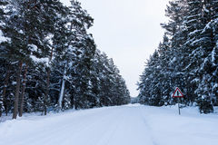 Snowy road under freezing white sky Stock Photo