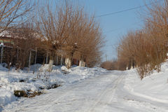 Snowy road in village Royalty Free Stock Photo