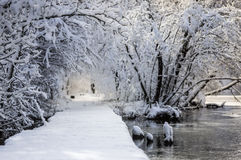 Snowy Road by the Water Stock Images