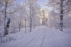 Snowy road in winter Stock Image