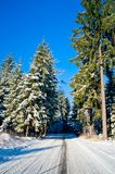 Snowy Road through Winter Forest Royalty Free Stock Images