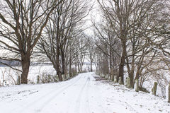 Snowy road in the winter Stock Photo