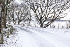 Snowy road in the winter Royalty Free Stock Image