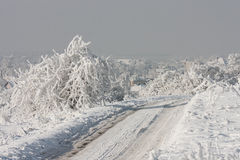 Snowy road in winter (Poland) Stock Photography