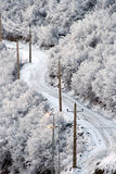 Snowy road in Wintry forest. Aerial view of winding snow covered road in Wintry forest royalty free stock photo