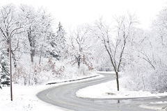Snowy Roadway. A road is surrounded by trees covered in snow Royalty Free Stock Photography