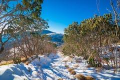 Snowy Roan Mountain Stock Photos