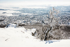 Snowy rocks and winter landscape Stock Images
