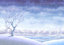 Snowy rolling winter landscape Stock Photos