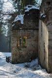 Snowy-Ruine Lizenzfreie Stockbilder
