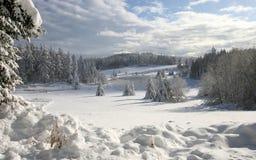 Snowy rural landscape Stock Image