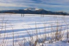 Snowy rural landscape. Stock Photo
