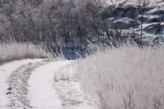 Snowy rural road. Snow-covered dirt road in country on a cold wintry day royalty free stock photo