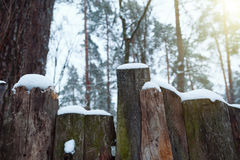 Snowy rustic fence in the countryside. The snow sparkles in the sun. Stock Photo