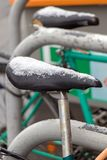 Snowy saddles of bicycles. Stand on a winter street stock photos
