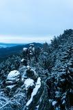 Snowy-Sandsteinfelsen im Wald lizenzfreie stockfotos