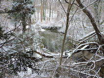 Snowy Scape Стоковые Изображения