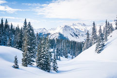 Snowy Scene royalty free stock photography
