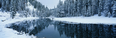 Snowy scene in Lake Tahoe area, CA royalty free stock images