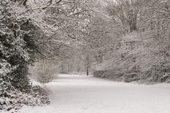 A snowy scene on Southampton Common stock images
