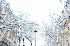 Snowy Scene in Winter with Paris Architecture. A snowy winter scene in Paris, France, after a snowstorm with snow covering the trees and Parisian architecture Royalty Free Stock Image