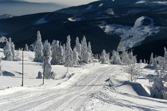 Snowy scenery with frozen spruces in the czech mountains Krkonose Stock Photos