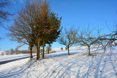 Snowy scenery with trees, street and blue sky. And with shadows stock photos