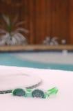 Snowy-Schutzbrillen lizenzfreie stockbilder