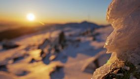 Snowy Shallow Depth Winter Sunset. Footage of a beautiful winter sunset. Shot in shallow depth stock video