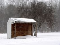Snowy Shed royalty free stock photo