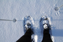 The snowy shoes Stock Photography