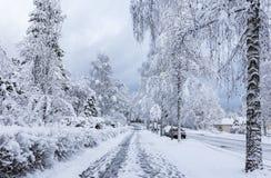 Snowy sidewalk Royalty Free Stock Image