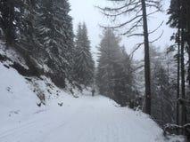 Snowy Sinaia Stockbilder