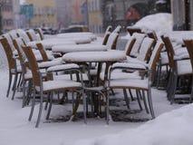 Snowy sitzt Tabellenwinter vor Stockbild