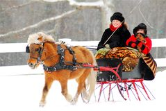 Snowy Sleigh Ride for three. A mother, daughter and pet take s sleigh ride through winter weather stock image
