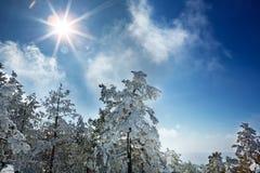Snowy-Sonnenscheinwinterlandschaft in den Bergen lizenzfreies stockfoto