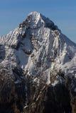 Snowy-Spitze stockbild