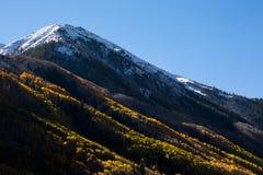 Snowy-Spitze mit ändernden Blättern im Herbst Stockbilder