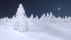 Snowy spruce forest at snowfall night. Dreamlike winter scenery with spruces completely covered with hoarfrost at snowfall night with a crescent in the sky Stock Photography