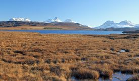 Snowy Stac Pollaidh and Inverpolly royalty free stock image
