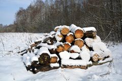 Snowy stack cutted firewood on winter field Royalty Free Stock Images